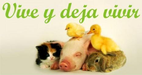 06_dia_del_vegano