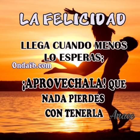 felicidad.jpg2