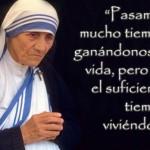 Frases de la Madre Teresa para WhatsApp descargar y publicar