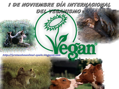 veganismo.jpg10