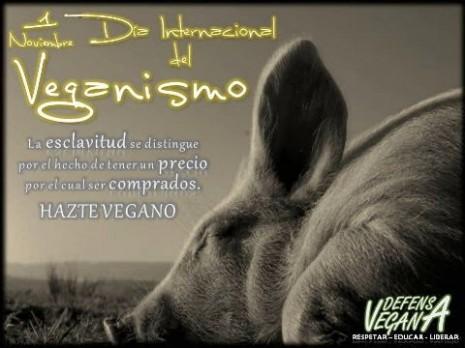 veganismo.jpg8