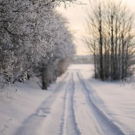 Bienvenido invierno:Sentimientos encontrados ¡Qué frío ...