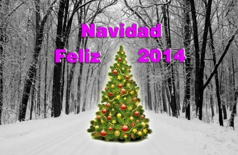 feliznavidad2014.jpg3