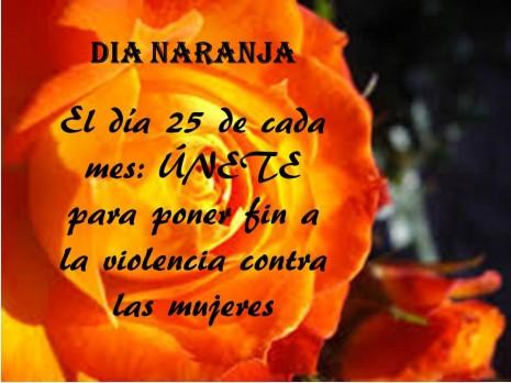 no violencia.jpg7