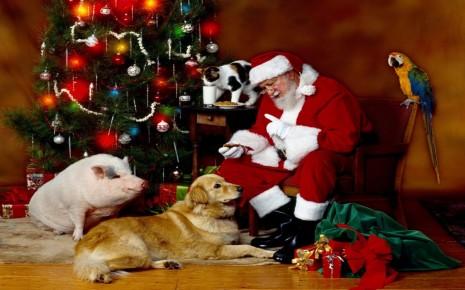 Feliz-navidad-imágenes-3