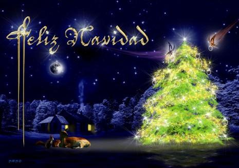 Feliz_Navidad_2010_by_pakkeko