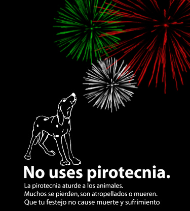 No-pirotecnia.jpg4 - copia