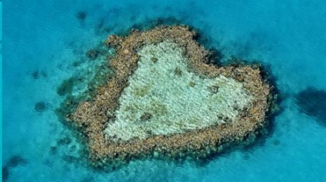 corazon Arrecife Corazón, Australia1