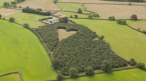 corazon naturaleza Pradera con forma de corazón, Reino Unido