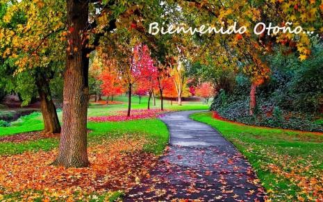 otoño jose.jpg3