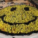 Día de la felicidad en sociedad 20 de marzo ¿Qué puedo hacer?