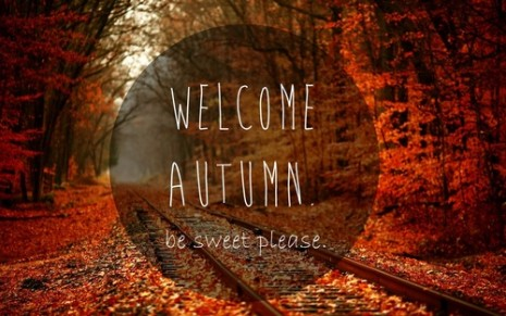 autumn-3