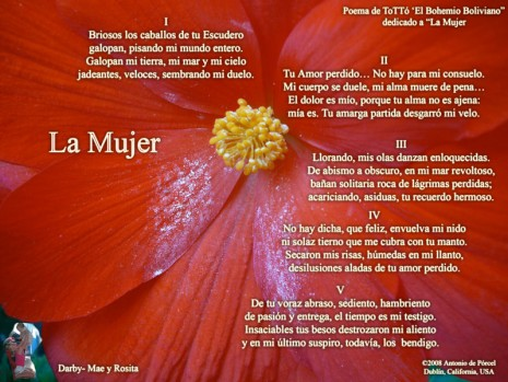 poema-feliz-dia-mujer.jpg4_