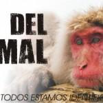 71 Imágenes de Felíz Día del Animal para descargar gratis y compartir
