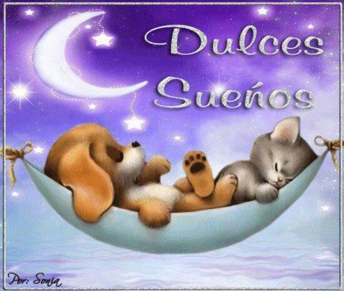 buenas-noches-con-perrito