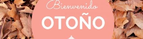 otonoTHE-BEST-VIEW-mfjk45j7hjgroybucqkwhs41dbym88mynfp67eumd4