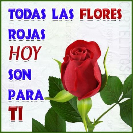 flores-rojas-para-ti
