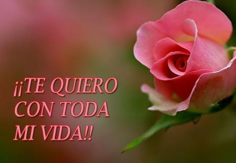 floresRosas-Con-Dedicatorias-Romanticas-para-ti
