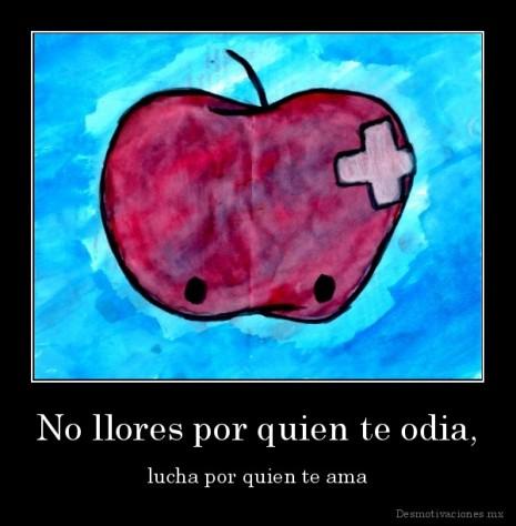 amordesmotivaciones.mx_No-llores-por-quien-te-odia-lucha-por-quien-te-ama_133234239671