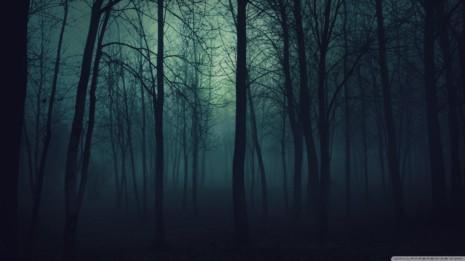 Dark-Forest-Wallpaper