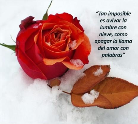 Frases-De-Motivacion-En-El-Amor-2