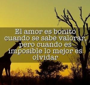 Imagenes-Para-Un-Amor-Imposible-Con-Frases-2-300x284