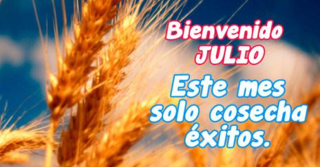 Imagen de espiga de trigo con frase para Julio http://fechaespecial.com