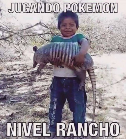 memes-super-graciosos-de-pokemon-go-para-whatsapp-3