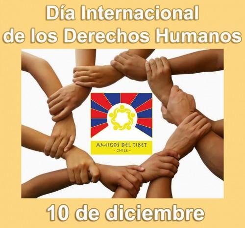 derechoshumanoscartel-jpg23