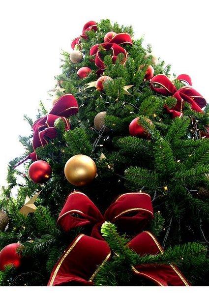 l-como-decorar-un-arbol-de-navidad_1387462506