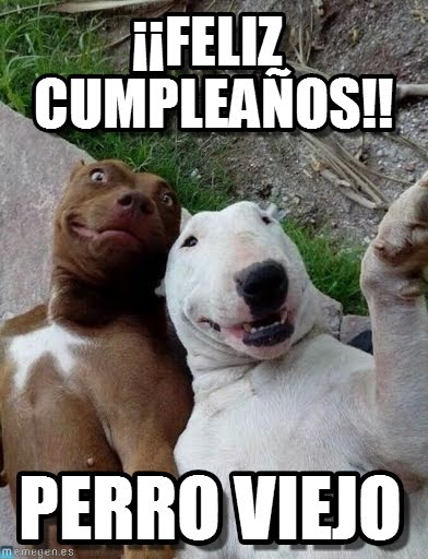 Mensajes de cumpleaños para grupos de Whatsapp – Imágenes
