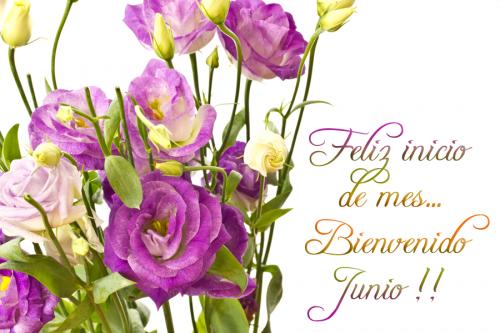 http://imagenwhatsapp.com/wp-content/uploads/2017/05/bienvenido-junio-mes-de-la-felicidad-postales-con-mensaje-para-recibir-nuevo-mes-junio-008.png