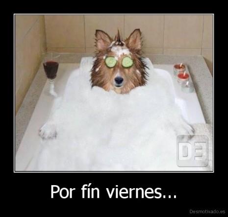 desmotivado.es_Por-fin-viernes...-_135852234181