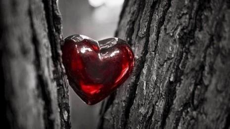 imagenes-de-corazones (8)
