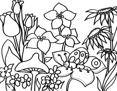 Dibujos Primavera 9