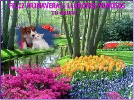 imagenes-para-facebook-primavera