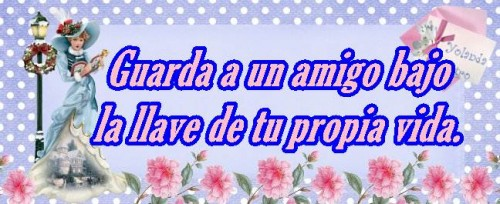 amigo (1)