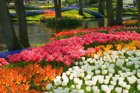 jardines50_paisajes_donde_siempre_deberia_ser_primavera_665800664_650x
