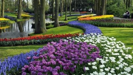 jardinesKeukenhof--644x362