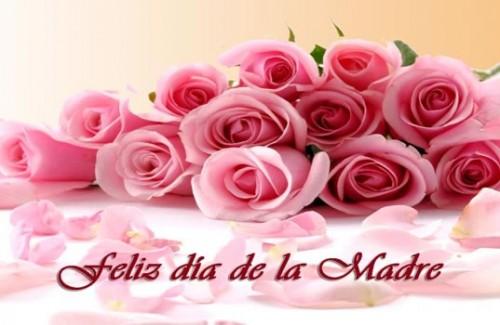 mamiDia-de-la-madre-559