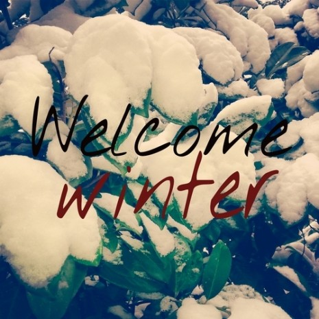 50557-Welcome-Winter