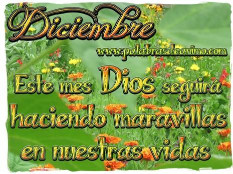 Diciembre-este-mes-Dios-seguirá-haciendo-maravillas