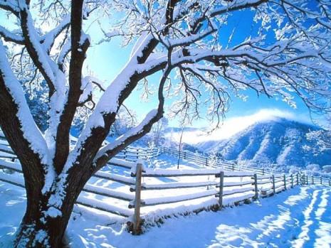 bienvenido-invierno-invierno_