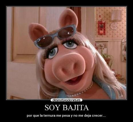 piggy.jpg1