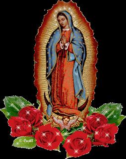 VirgenGuadalupe_CTV1a