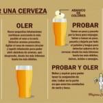 Infografías útiles sobre la cerveza: Diferentes tipos de cervezas