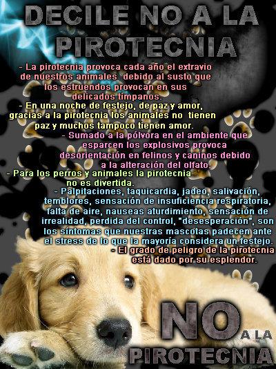no-a-la-pirotecnia1.jpg5
