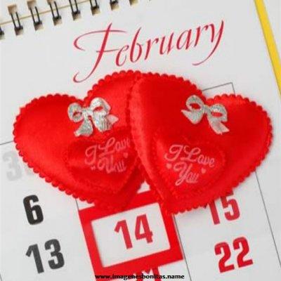 14 de febrero.png1