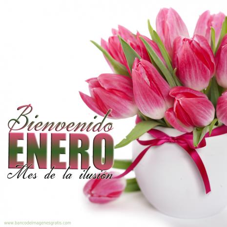 MES-ENERO.jpg5