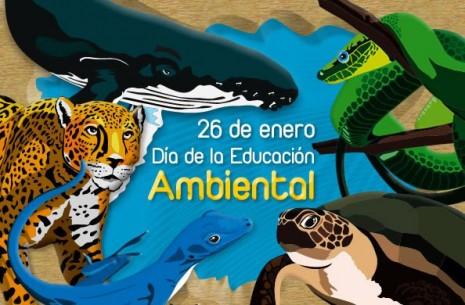educacion-ambiental-2-728.jpg3